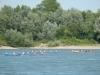 Vorne das Gewinnerboot (Leverkusen+KRV), dann KRV und FWG.